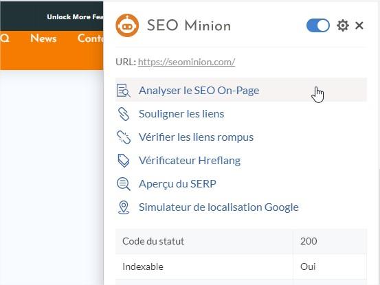 SEO Minion Analyser
