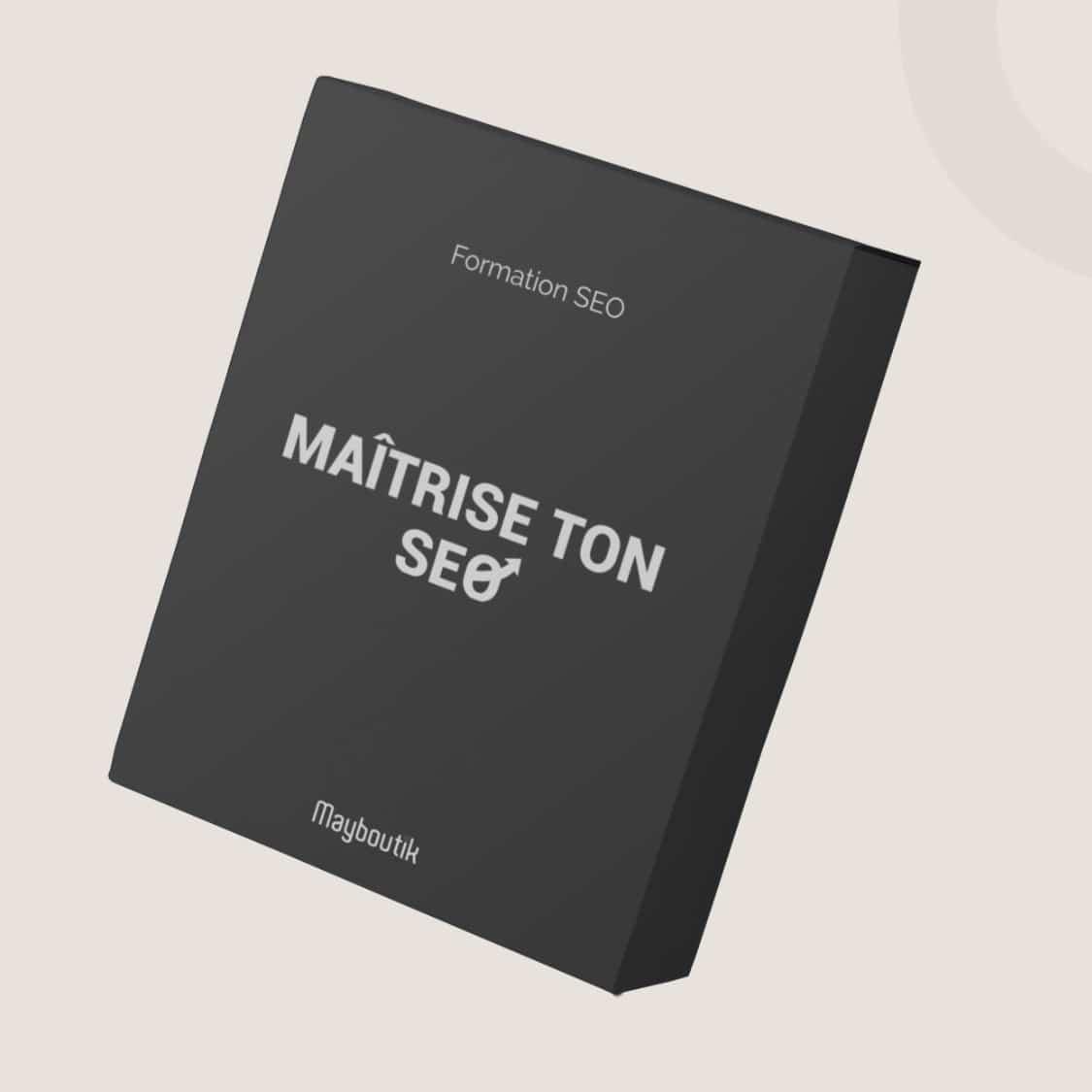 Formation Maitrise ton SEO