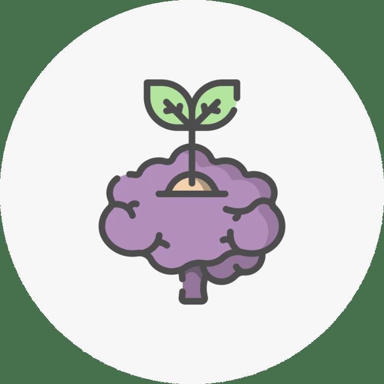 Icone-apprentissage-Mayboutik